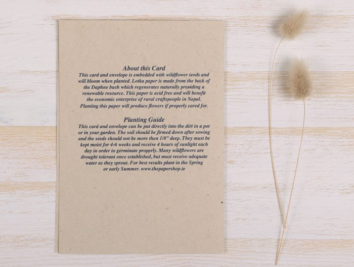 Plantable Fathers Day Card Banner - Back