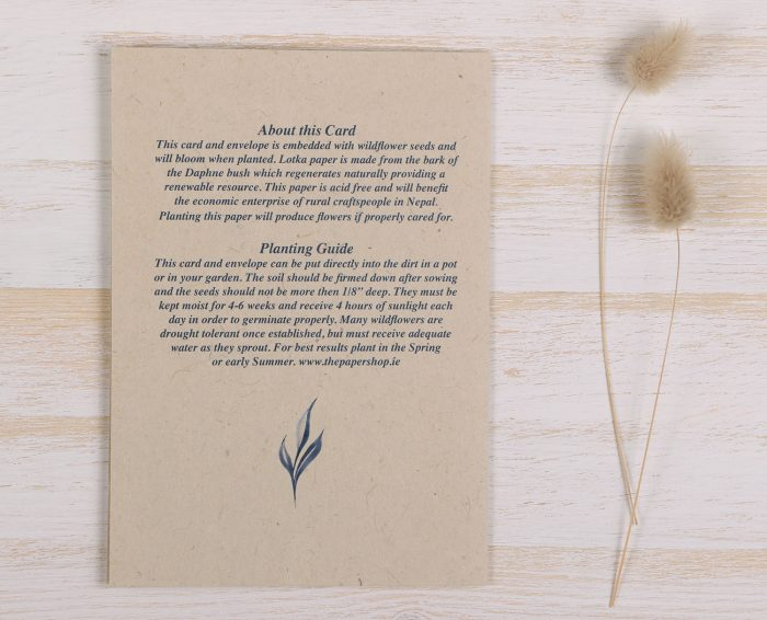 Plantable Fathers Day Card Blue Frame - Back
