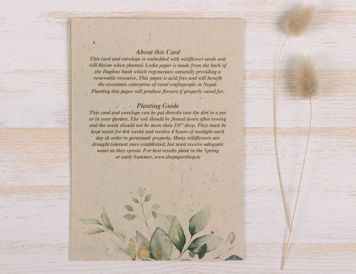 Plantable Fathers Day Card Eucalyptus - Back