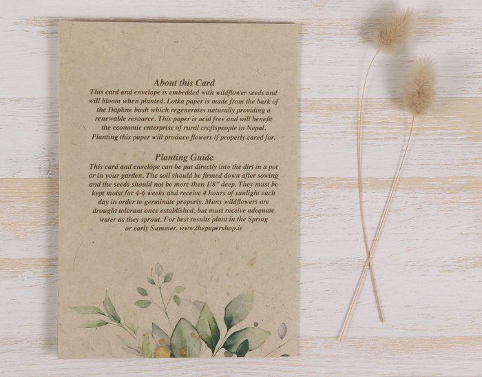 Plantable Condolence Card - Eucalyptus - Back