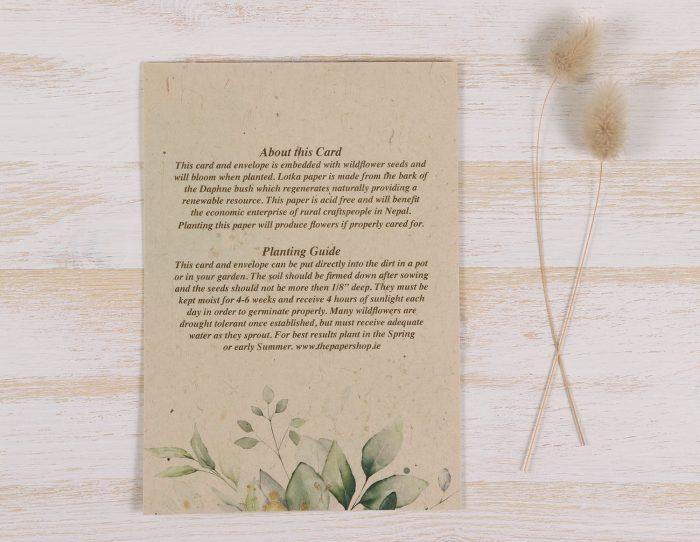 Plantable Condolence Card - Father Eucalyptus - Back