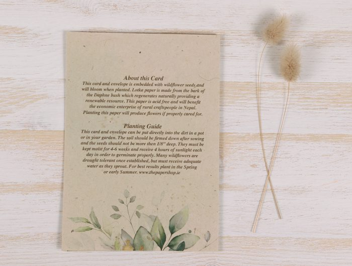 Plantable Condolence Card - Mother Eucalyptus - Back