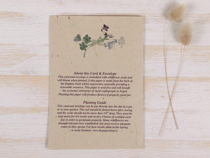 Plantable Condolence Card - Wild Wreath - Back