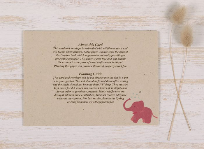 Plantable New Baby Girl Card - Back