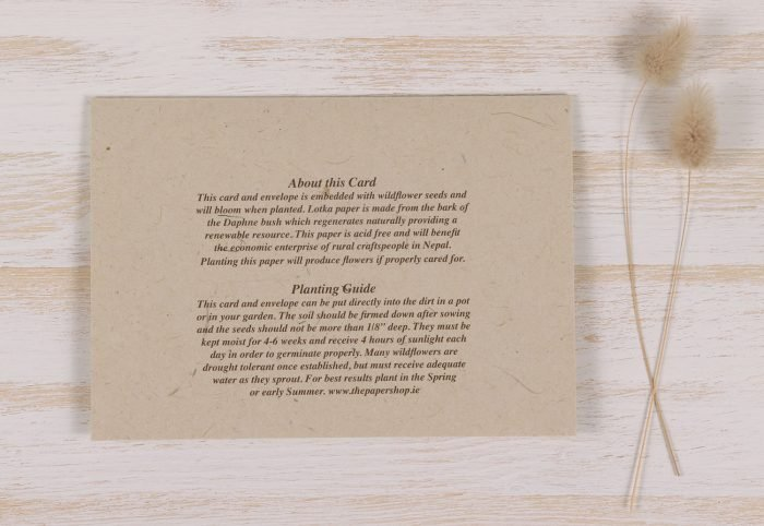 Plantable Seeded Wedding Card - Pastel Rose - Back