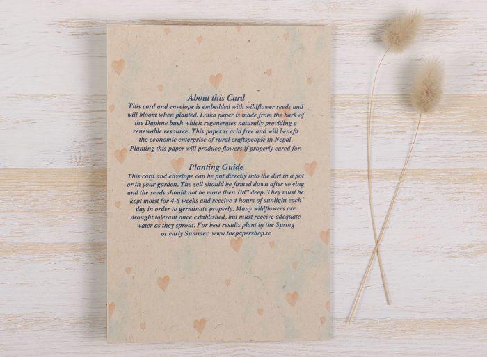 Plantable Valentine's Day Card - Birdhouse - Back