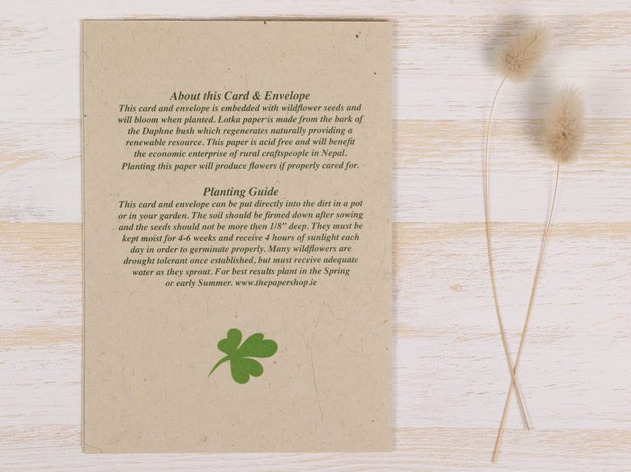 St. Patrick's Day Card - Back