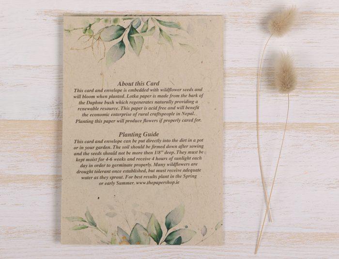 Thinking of You Card Eucalyptus- Back