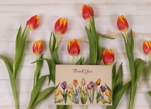 Plantable Greeting Card Tulips