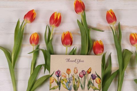 Plantable Greeting Card Tulips