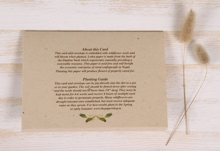 Birthday Card - Berry Wreath - Back