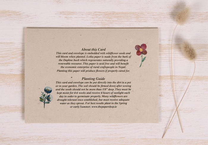 Plantable Anniversary Card - Meadow - Back