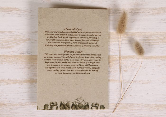 Plantable Birthday Card for Mother - Copper Rose - Back