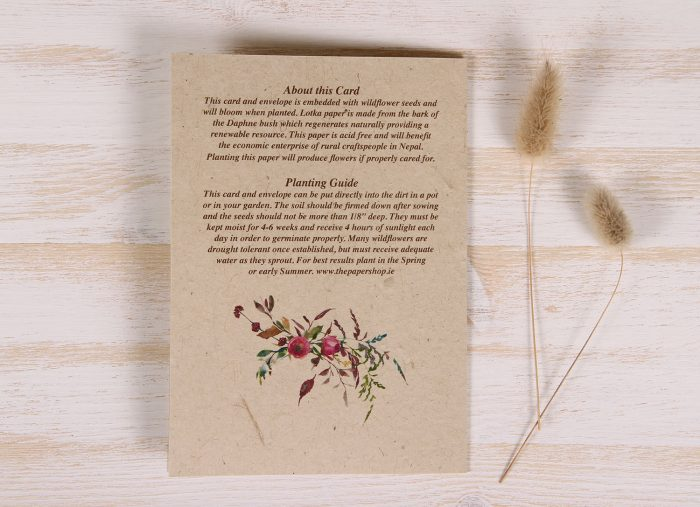 Plantable Birthday Card for Mother - Flowers & Twigs - Back
