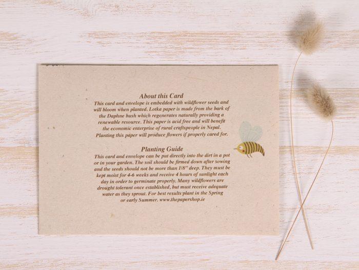 Plantable Father's Day Card - Garden Border - Back