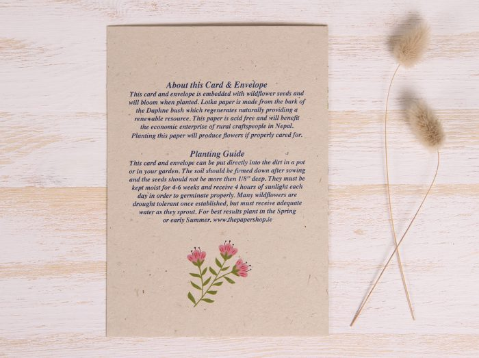 Plantable Get Well Soon Card - Spring Flowers - Back