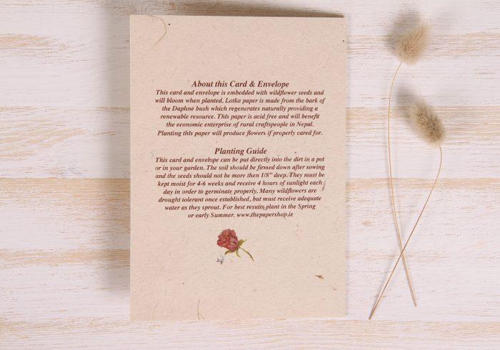 Plantable Wedding Day Card - Natural Wreath - Back