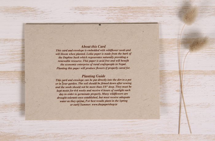 Plantable Autumn Card - Leaves - Back