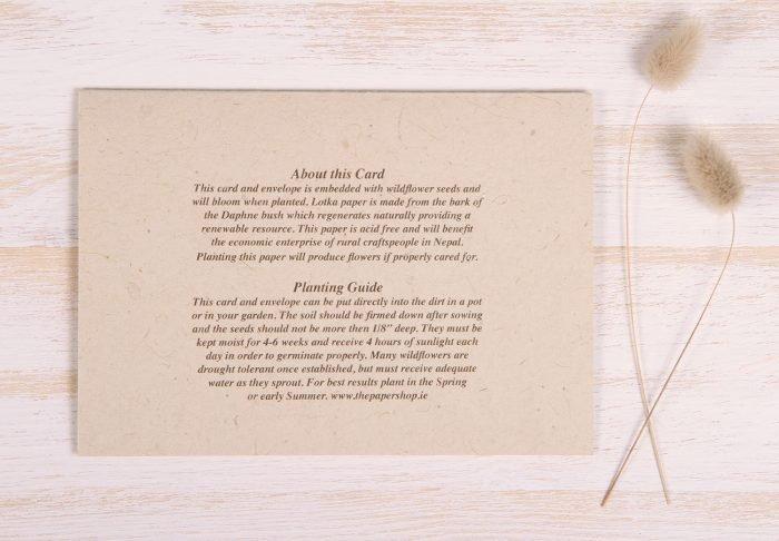 Plantable Condolence Card - Pastel Leaves - Back