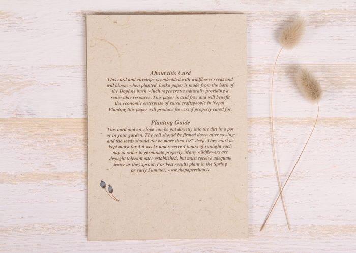 Plantable Condolence Card - Rustic Wreath - Back