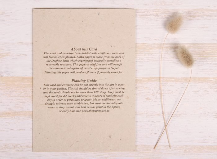 Plantable Condolence Card for Father - Gold & Leaves - Back