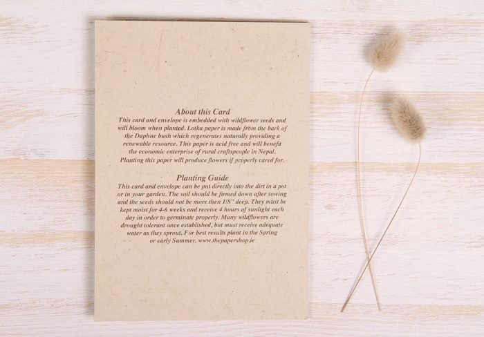 Plantable Condolence Card for Father - Nature - Back