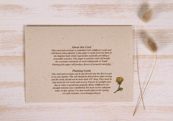 Plantable Greeting Card - Any Occasion - Art Deco - Back