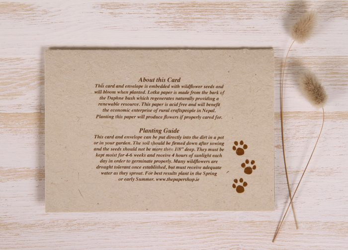 Plantable Greeting Card - Any Occasion - Cats & Dogs - Back