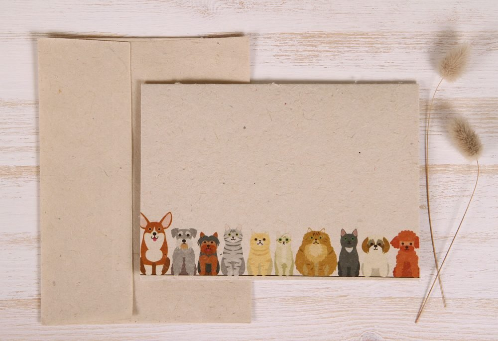 Plantable Greeting Card - Any Occasion - Cats & Dogs - Front