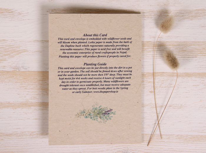 Plantable Greeting Card - Any Occasion - Lavender - Hydrangea - Back