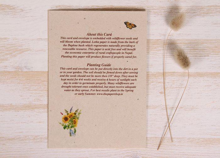 Plantable Greeting Card - Any Occasion - Sunflowers - Back