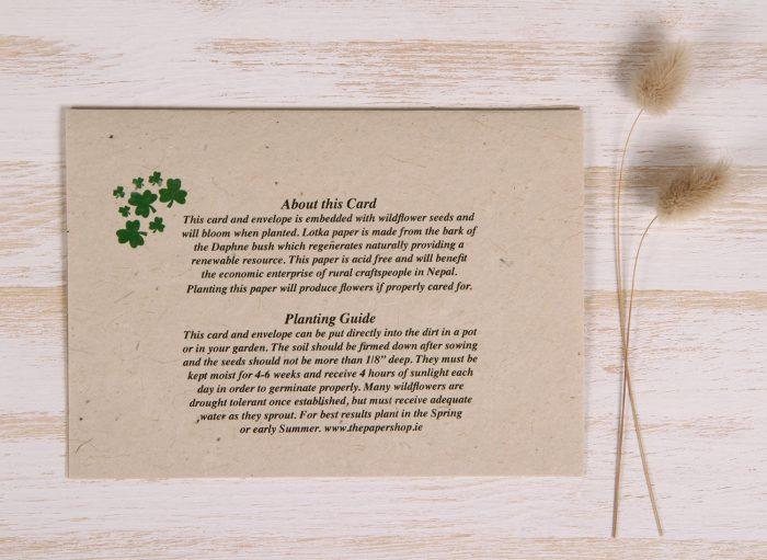 Plantable St. Patrick's Day Card - Shamrock - Back