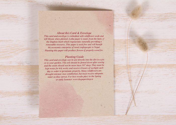 Plantable Greeting Card - Birthday - Cake & Balloons - Back
