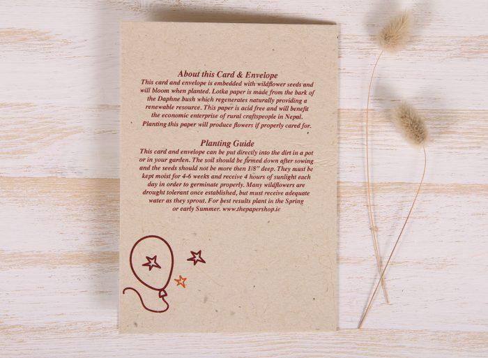Plantable Greeting Card - Birthday -Doodles - Back