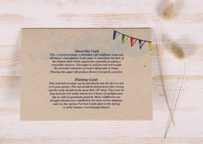 Plantable Greeting Card - Birthday - Gold - Back