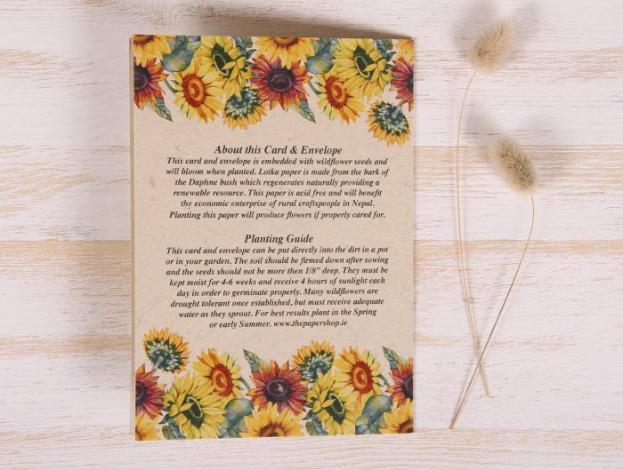 Plantable Greeting Card - Birthday - Sunflowers - Back