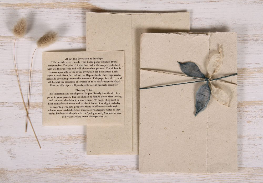 Plantable Invitation - Lotka Wrap - Leaf Tie - Natural