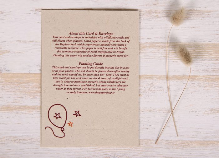 Seeded Plantable 40th Birthday Card - Doodles - Back