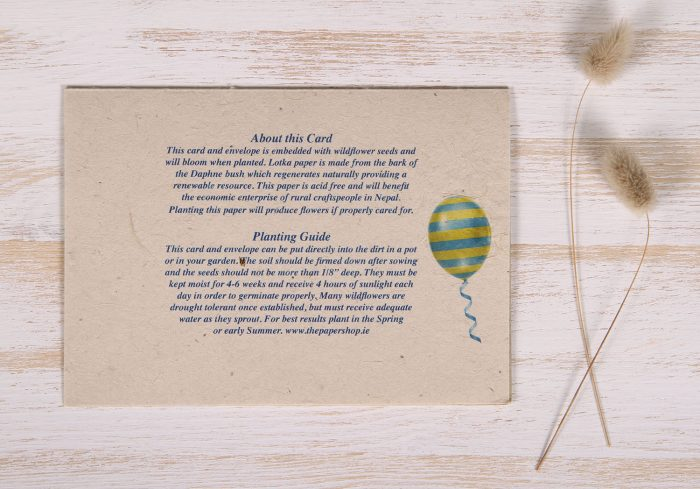 Seeded Plantable 50th Birthday Card - Balloons & Banner - Back