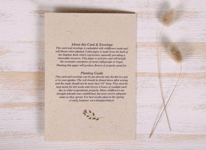 Seeded Plantable 60th Birthday Card - Botanical - Back