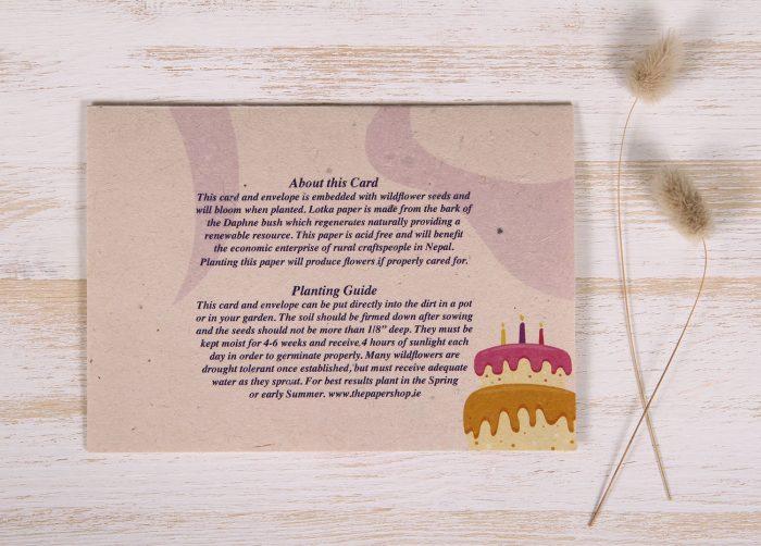 Seeded Plantable 70th Birthday Card - Festive - Back