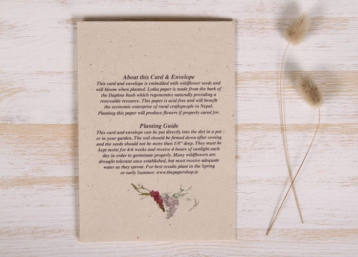Seeded Plantable 70th Birthday Card - Wildflowers - Back