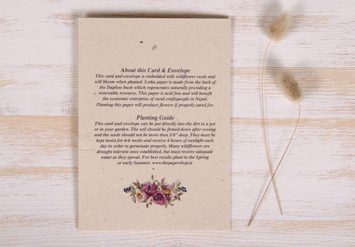 Seeded Plantable 80th Birthday Card - Mauve Roses - Back