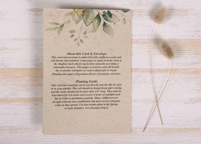 Seeded Plantable Condolence Card for Brother - Eucalyptus - Back
