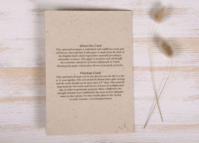 Seeded Plantable Condolence Card for Daughter - Lavender Leaves - Back