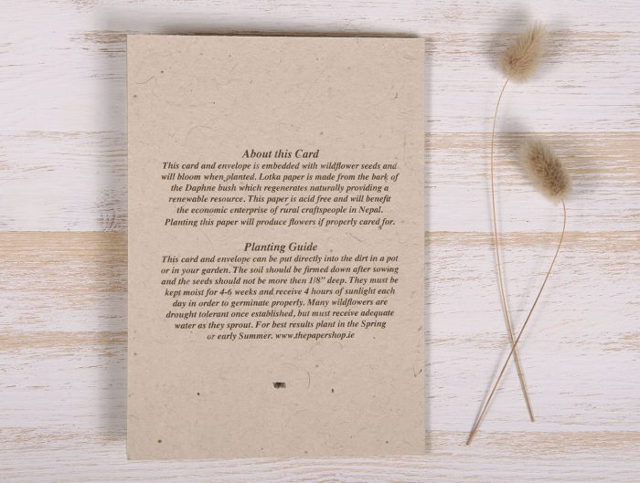 Seeded Plantable Condolence Card for Sister - Lavender Leaves - Back