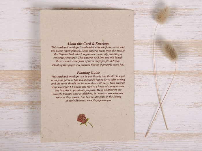 Seeded Plantable Condolence Card for Wife - Natural Wreath - Back